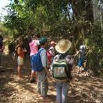 2013 03 09 Recorrido por el valle VIÑALES CUBA ValV (7)