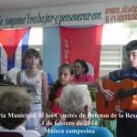 PLENARIA CDR MUNICIPAL 20142001 DSCN1474