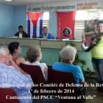 PLENARIA CDR MUNICIPAL 20142001 DSCN14951