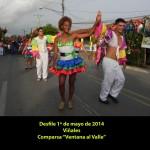 20140501 Desfile 1 de Mayo VIÑALES(5)