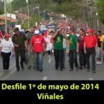 20140501 Desfile 1 de Mayo VIÑALES(8)