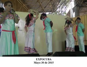 20150530 Presentacion ValV EXPOCUBA Pinar del Rio(4)