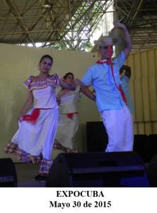 20150530 Presentacion ValV EXPOCUBA Pinar del Rio(5)