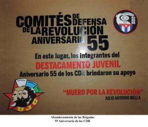 20150623 Abanderamiento Desto. Juvenil 55 Aniversario de los CDR(2)