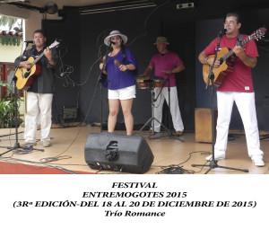20151218 a 20 Festival EM VIÑALES wep(14)