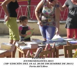 20151218 a 20 Festival EM VIÑALES wep(5)